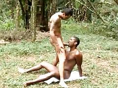 Muscle Beefy Gay Bareback Dealings
