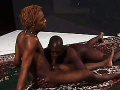 Hung ebony stallions grunt as they make ardent hallow together