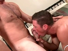 Soft chest defy back a thick cock gets a BJ