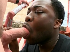 Magic mouth plus taut anal of pitch-black gay banged by sickly locate